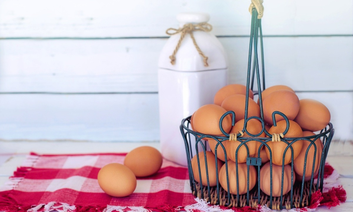 Rize sustainable food ETF to ditch egg, dairy and land-based fish farming firms